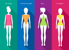 Female body types Royalty Free Stock Photo