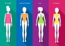 Female body types Royalty Free Stock Photo