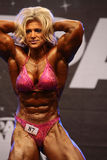 Female bodybuilder Royalty Free Stock Photography