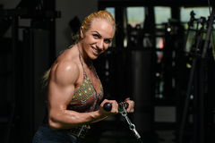Female Bodybuilder Doing Heavy Weight Exercise For Biceps Royalty Free Stock Photo