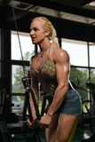 Female Bodybuilder Doing Heavy Weight Exercise For Triceps Stock Image