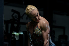 Female Bodybuilder Doing Heavy Weight Exercise For Triceps Royalty Free Stock Images