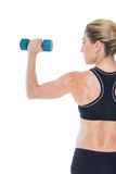 Female bodybuilder holding a blue dumbbell Stock Photography