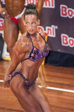 Female bodybuilder in triceps pose and purple bikini Royalty Free Stock Image
