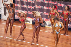 Female bodybuilders flex their abdominals and thighs in a lineup Royalty Free Stock Photography
