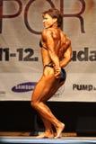 Female bodybuiler Stock Images
