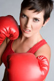 Female Boxer Stock Photo