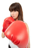 Female Boxer Royalty Free Stock Photography