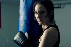 Female boxer. Strong, beautiful female boxer having a workout Royalty Free Stock Photos