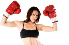 Female Boxer. Sexy and well fit female boxer raises her gloves in victory Stock Images