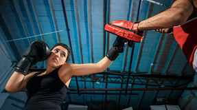 The female boxer and afro american male boxer. The female boxer and afro american male boxer training box at gym Stock Image