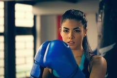 Female Boxer Stock Photos