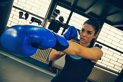 Female Boxer. Attractive Female Boxer At Training Royalty Free Stock Photos