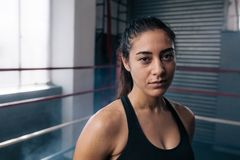 Female boxer at the boxing studio. Close up of a female boxer inside a boxing ring. Woman boxer at a boxing studio Stock Photos