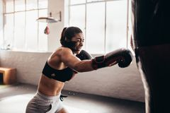 Female boxer training inside a boxing ring Stock Photos