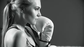 Female boxer. Intense woman boxer throwing punches stock video footage