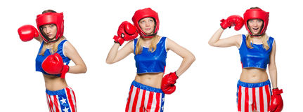 The female boxer isolated on the white background Royalty Free Stock Images