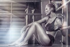Female boxer posing inside a boxing ring. Attractive blonde woman with perfect fit body Stock Photography