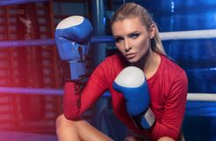 Female boxer posing inside a boxing ring. Attractive blonde woman with perfect fit body Stock Images