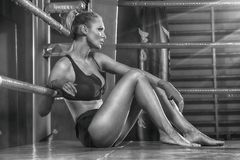 Female boxer posing inside a boxing ring. Attractive blonde woman with perfect fit body Royalty Free Stock Images