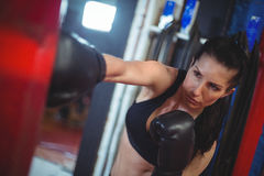 Female boxer practicing boxing with punching bag Royalty Free Stock Images