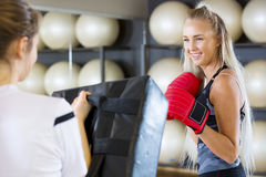Female Boxer Practicing In Health Club Stock Photo