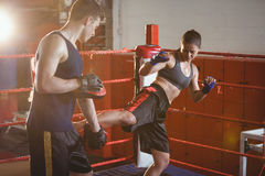 Female boxer practicing kickboxing with trainer her trainer Royalty Free Stock Photo