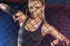 Female boxer posing inside a boxing cage. Female boxer standing inside a boxing cage. Attractive blonde woman with perfect fit body Stock Photos