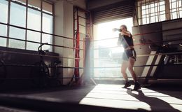Female boxer training inside a boxing ring. Female boxer doing shadow boxing inside a boxing ring. Boxer practicing her punches at a boxing studio Stock Image