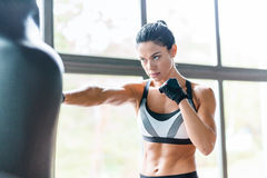 Female Boxer Training with Punching Bag. Portrait of strong muscular brunette woman training boxing with punching bag against window of sports center, looking royalty free stock images