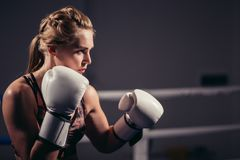 Female Boxer wearing gloves posing in boxing studio. Attractive Female Boxer wearing gloves posing in boxing studio Royalty Free Stock Photography