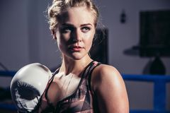 Female Boxer wearing gloves posing in boxing studio. Attractive Female Boxer wearing gloves posing in boxing studio Royalty Free Stock Photos