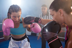 Female boxers fighting in ring Stock Photography
