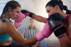 Female boxers punching each other. At boxing ring at fitness studio Stock Image