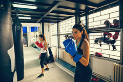 Female Boxers At Training Stock Images
