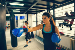 Female Boxers At Training Royalty Free Stock Photography