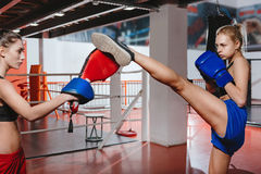 Female boxers working out in a gym Royalty Free Stock Photos