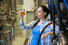 Female brewer testing beer Royalty Free Stock Image