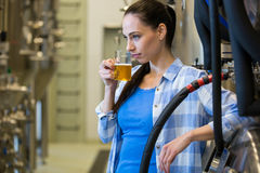 Female brewer testing beer Royalty Free Stock Images