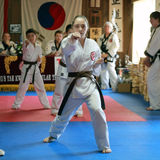 Female brown belt tests for promotion in Cedar Rapids, Iowa. Royalty Free Stock Image