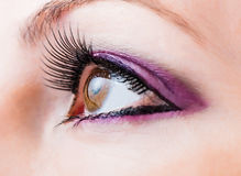 Female brown eye with long lashes. Woman brown eye with false extremely long lashes stock photography