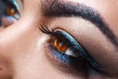 Female brown eyes looking away with make up. Macro photo Royalty Free Stock Images