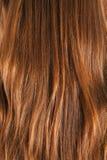 Female brown hair | Texture Stock Photos