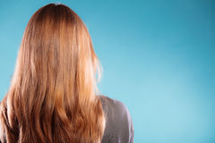 Female brown long healthy loose hair rear view Royalty Free Stock Photo