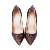 Female brown shoes Royalty Free Stock Image