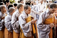 Female buddhist monks in Ho Chi Minh, Vietnam royalty free stock image