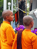 Female Buddhist Monks. Praying at the Temple in Sri Lanka Royalty Free Stock Images