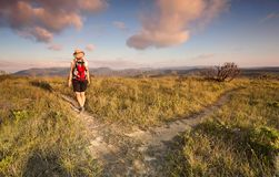 Female bushwalker hiking in the Blue Mountains royalty free stock images