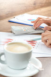 Female business accountant proofreading financial annual report Stock Photo