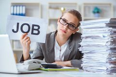 The female businesswoman boss accountant working in the office Royalty Free Stock Photos